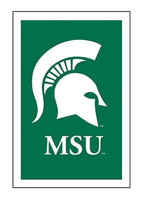 Michigan State University House Flag